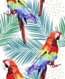Vattenfärgillustrationen, papegojan, munkhättor med palmbladet mönstrar, räcker målat isolerat på vit bakgrund vektor illustrationer