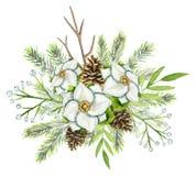 Vattenfärgjulbukett med granen, pinecones, vit blomma royaltyfri illustrationer