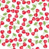 Vattenfärgkörsbär, prydnad med bäret, naturtema, sömlös modell, vattenfärgmålarfärg för gåvaasken, tapet, backgroun vektor illustrationer