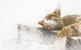 Vattenfärgkatt som sover på golv med abstrakt färg på vitbokbakgrund Målning av härligt konstverk royaltyfri illustrationer