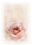 Vattenfärgkort med rosen och gränsen Royaltyfria Bilder