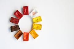 Vattenfärgmålarfärg i den rundade cuvetten Royaltyfria Bilder