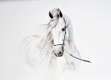 Vattenfärgmålning av den andalusian hästståenden Arkivfoto