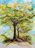Vattenfärgmålning av ett träd på en vårdag royaltyfri bild