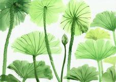 Vattenfärgmålning av grön lotusblomma lämnar Arkivbild