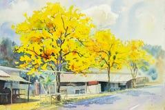 Vattenfärgmålningguling, orange färg av goldentreen blommar Arkivbild