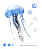 Vattenfärgmanetillustration Arkivbild