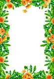 Vattenfärgmaskrosen blommar, blomstrar den rektangulära ramen som isoleras på vit bakgrund Arkivbild