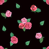Vattenfärgmodell med rosor på svart bakgrund Arkivfoton