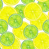 Vattenfärgmodell med skivor av citronen och limefrukt på whi Royaltyfria Bilder