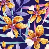 Vattenfärgorkidén blommar den tropiska modellen stock illustrationer