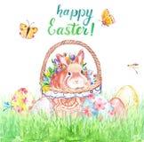 Vattenfärgpåskkort med den gulliga kaninen i korgen, kulöra ägg och grönt gräs som isoleras på vit bakgrund royaltyfri foto