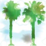 Vattenfärgpalmträd Royaltyfri Fotografi