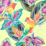 Vattenfärgpapegojor Tropisk blomma och sidor exotiskt stock illustrationer