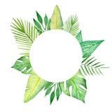 Vattenfärgram av färgrika tropiska sidor Begrepp av djungeln för designen av inbjudningar, hälsningkort Vektor Illustrationer