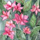 Vattenfärgrosa färgen blommar blom- texturbakgrund för bladet Arkivfoton