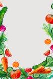 Vattenfärgsammansättning med grönsakillustrationen Arkivfoto