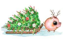 Vattenfärgsammansättning med spädgris, släde, snö och jul t royaltyfri illustrationer