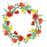 Vattenfärgsammansättningar för lösa blommor med vallmo royaltyfri illustrationer