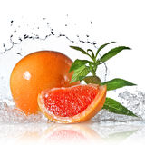 Vattenfärgstänk på grapefrukten med mintkaramellen som isoleras på vit Royaltyfri Foto