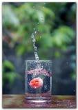 Vattenfärgstänk vid en frukt Royaltyfri Foto