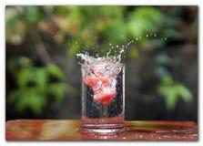 Vattenfärgstänk vid frukt Royaltyfria Foton