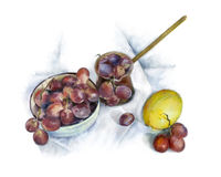 Vattenfärgstilleben med frukter stock illustrationer