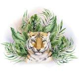 Vattenfärgtigerillustration och tryck för djungel för sidor för sommarparadis tropiskt Gömma i handflatan växten, och blomman iso royaltyfri illustrationer