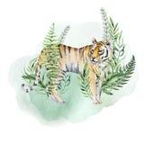 Vattenfärgtigerillustration och tryck för djungel för sidor för sommarparadis tropiskt Gömma i handflatan växten, och blomman iso stock illustrationer