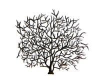 Vattenfärgträd Treen without lämnar Arkivbilder