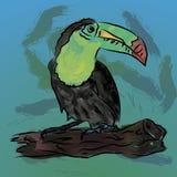 Vattenfärgtukanfågel också vektor för coreldrawillustration Arkivfoto