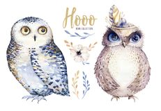 Vattenfärguggla med blommor och fjädern Hand dragen isolerad illustration med fågeln i bohostil Tryckbar barnkammare vektor illustrationer