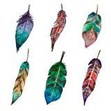 Vattenfärguppsättning av 6 fjädrar i bohostil royaltyfri illustrationer