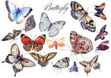 Vattenfärguppsättning med fjärilar Arkivbild