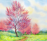 Vattenfärgvårlandskap Blomningträd i ett fält Fotografering för Bildbyråer