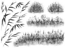 Vattenfärgvasser och gräs vektor illustrationer