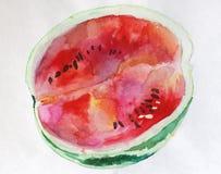 Vattenfärgvattenmelon Fotografering för Bildbyråer