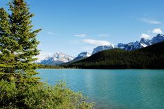 Vattenfågel sjö, kanadensiska steniga berg, Kanada Arkivbilder