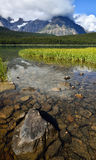 Vattenfågel sjöBanff nationalpark Royaltyfri Foto