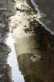 Vattenförorening Arkivbild
