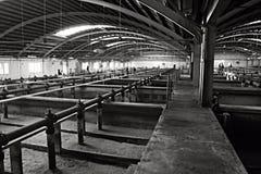Vattenförsörjningssystem III Royaltyfri Fotografi
