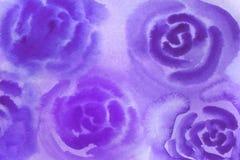 vattenf?rgbakgrundsillustration Purpurfärgade oskarpa rosor för vattenfärg royaltyfri illustrationer