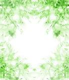 Vattenf?rgbukett av blommor, h?rlig abstrakt f?rgst?nk av m?larf?rg, modeillustration Orkid?blommor, vallmo, bl?klint stock illustrationer