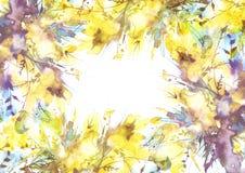 Vattenf?rgbukett av blommor, orkid?blommor, vallmo, royaltyfri illustrationer