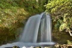 Vattenfall över en grotta i en skinande grön skog royaltyfria foton