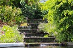 Vattenfall över moment i en trädgård Royaltyfria Foton