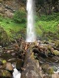 Vattenfall över stupat träd Royaltyfri Fotografi