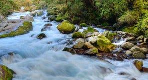 Vattenfall Arkivbilder