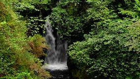 Vattenfall stock video