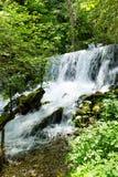 Vattenfall av floden Vrelo arkivbilder